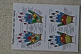 Reflexzonen von der Hand, eine Übersichtskarte im Taschenformat, von Jan von Baarle