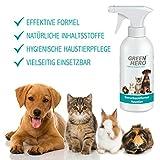 GreenHero Geruchsentferner Haustier Spray für Katze, Hund und Nager | 100% Natürliche Geruchsreinigung durch Enzyme bzw. Mikroorganismen | Geruchsneutralisierer gegen organische Gerüche | Urin, Tiergeruch, Erbrochenes etc. | Hautverträglich, frei von Duftstoffen - 2