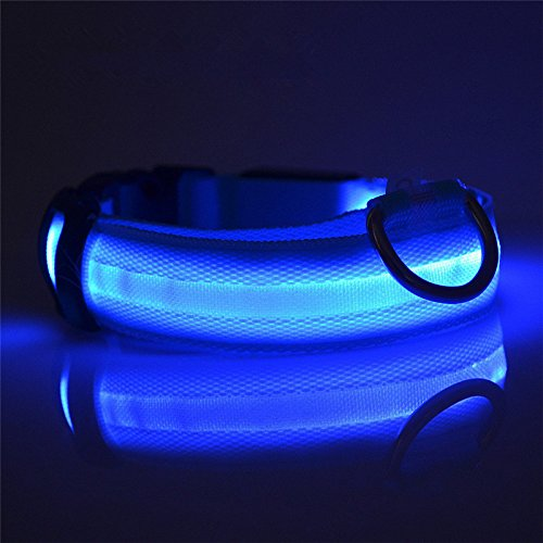 TKSTAR LED Hundehalsband mit USB wiederaufladbar wasserdicht Leuchtendes Halsbänder Blinkender LED Hunde Sicherheits Halsband Hundehalsband Nylon Leuchtender Nacht Hundeband mit USB Wiederaufladbarem Leuchtendes Hellem Sicherheits Halsband für Hunde, Haustier (M 2.5cm X (40cm--48cm), Blau) (Wasserdicht Led-halsband)