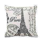 Hemore Süß Sofakissen Plüsch Spielzeug Dekokissen Stuhlkissen Sitzkissen Paris Eiffelturm Stempel benutzerdefinierte Kissen Kissenhülle, Sofakissen, Dekokissen, Kissenbezug