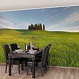 Vliestapete - Grünes Feld in Toskana - Fototapete Breit Vlies Tapete Wandtapete Wandbild Foto 3D Fototapete, Größe HxB: 320cm x 480cm