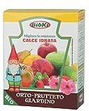 Bioki Calce Idrata
