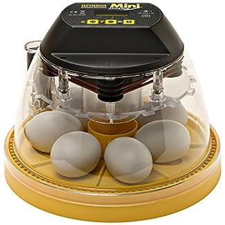 Brinsea Mini Advance Egg Incubator Brinsea Mini Advance Egg Incubator 51ZAx5E1MUL
