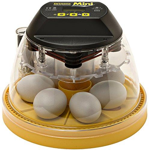 brinsea-mini-advance-egg-incubator