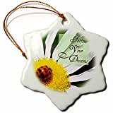 3dRose orn_31470_1 Follow Your Dreams Ladybug and Daisy Flower Inspirational Quotes Snowflake Porcelain Ornament, 3-Inch
