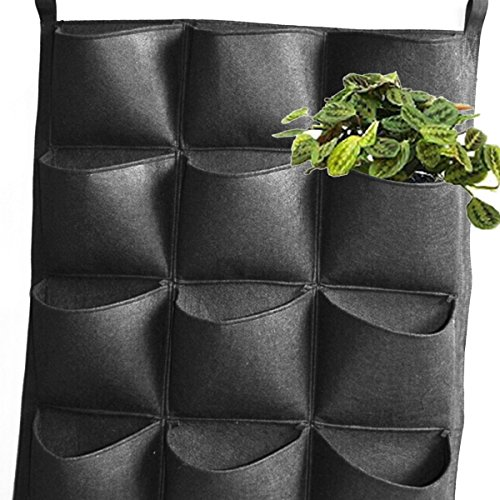 plantes murale vertical. Black Bedroom Furniture Sets. Home Design Ideas