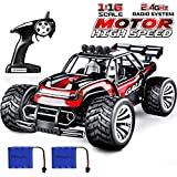 Estela 2WD RC Auto Off Road Buggy Racing Truck mit Aufladbaren Batterien