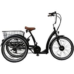 """Triciclo Eléctrico Ebici Tryme2 24""""x3 Motor 250W36V11AH 7V"""