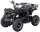Elektro Kinder Miniquad TORINO 800 Watt ATV Pocket Quad Kinderquad Kinderfahrzeug