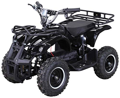 Elektro Kinder Miniquad TORINO 800 Watt ATV Pocket Quad Kinderquad Kinderfahrzeug (Schwarz) (Dirt Rc Mini Bike)