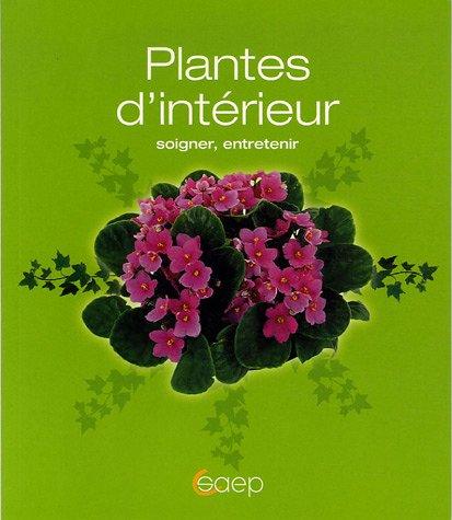 plantes-dinterieur-soigner-entretenir