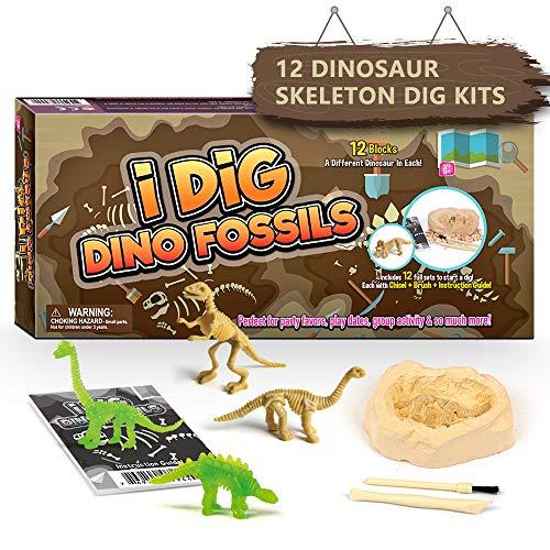 Dr. Daz Dinosaurier Skelette Ausgrabungsset für Kinder Nachtleuchtender Dino Toy Ausgraben Spielzeug Archäologie Party Kit