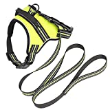 Systond Hundeweste Harness mit 2M Zug Haustier Zugseil Reflektierende Brustgurt Soft gepolstert für kleine Large Medium Hund