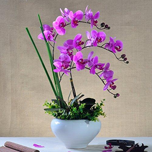 Beata.T Puthe Moth Orchid Fiori artificiali di emulazione di plastica di fiori di seta Fiori secchi Fiori decorazioni di fiori trascorrere cinese paesaggi in miniatura Home Decor,sogno viola)