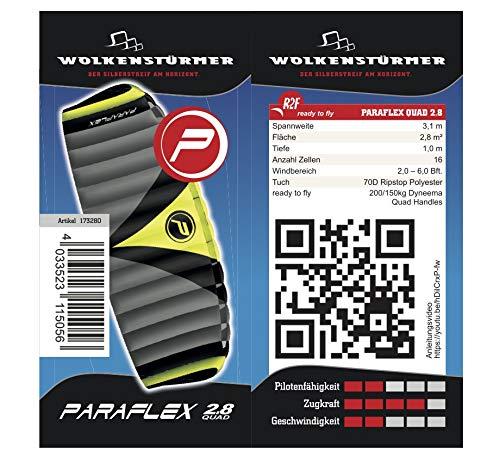 Wolkenstürmer Paraflex Quad 2.8, 4-Leiner Action Lenkmatte - Hochwertiger Kite mit Bar