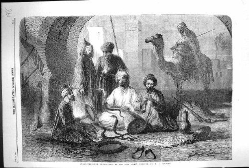 Antiker Druck von Kamel 1859 Schlangenbeschwörer-Einwohner-Riff-Küsten-Marokkos Afrika - Afrika Antique Print