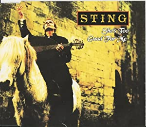 Sting -  A Night in the Life of Sting 2 [26aug93 Oslo]