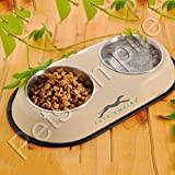 Pets Empire Stainless Steel Double Diner Dog Cat Food Bowls With Anti Slip Mat 2 X 200 Ml-Color May Vary