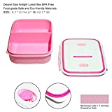 Lunch Box with Insulated Lunch Bag Vacuum Bottle 4 in 1 Set BPA-Free Leakproof Microwave Freezer Dishwasher Safe Right Made for Adults Kids Boys Girls, 1.2L Pink