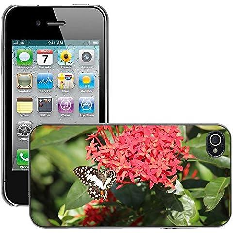 Carcasa Funda Prima Delgada SLIM Casa Case Bandera Cover Shell para // M00115079 Ixora Fiore Rosso Farfalla Cluster // Apple iPhone 4 4S 4G