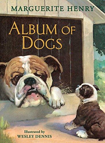Album of Dogs (English Edition) -