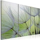 murando - Cuadro en Lienzo 120x80 !!! Cuadro en Lienzo - Impresion en calidad fotografica - Cuadro en lienzo tejido-no tejido naturaleza flores 030210-134