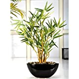 Fourwalls Artificial  Bamboo plant in a ceramic pot (38cm total height)