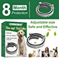 SEGMINISMART Flea and Tick Collar,Anti Flea Collar for Dogs and Cats Flea Treatment Adjustable and Waterproof for Small Medium Large Dogs and Cats by SEGMINISMART