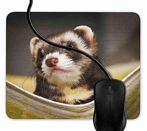 Mauspad Nettes Frettchen In Einer Hängematte Rutschfeste Gummi Basis Mouse pad, Gaming mauspad für Laptop, Computer 1F2307