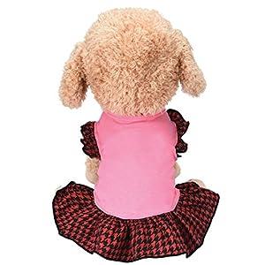 Angelof Vetement Chien/Chat Petit Chien Robe Pet Dog T-Shirt Chien Chat Cute Veste D'Été Jupe Gilet de Mille-Oiseau Rose Accessoire Chihuahua