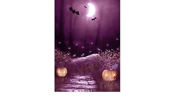 Sjoloon Jlt 9572 Fotohintergrund Halloween Nacht Unter Kamera