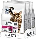 Perfect Fit Katzen-/Trockenfutter Adult 1+ für erwachsene Katzen Adult Reich an Lachs, 3 Beutel (3 x 2,8 kg)