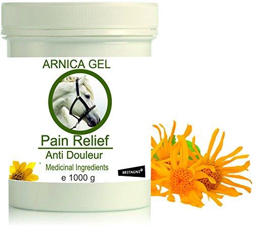 Arnika für Pferde - Schmerzstiller & Entzündungsblocker Arnika Gel 1000g l Gel für Muskeln, Sehnen und Gelenke -