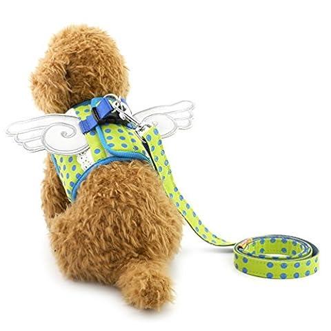 Smalllee _ Lucky _ Ranger pour animal domestique Fancy Dots Ailes d'ange Marche Gilet Harnais laisse Ensemble pour petit chien chat n'Pull en maille filet souple rembourré