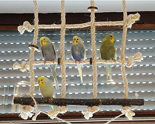 Kletternetz für Wellensittich, Nymphensittich & Co. Dieses Vogelspielzeug ist das perfekte Turnspielplatz