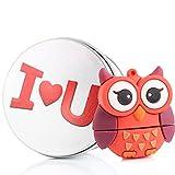 USB Memory Stick USB Flash Drive Rose Cute Lovely Owl Animal avec porte-clés Cadeau/cadeau 8g/16G/32G/64G 16G I LOVE YOU