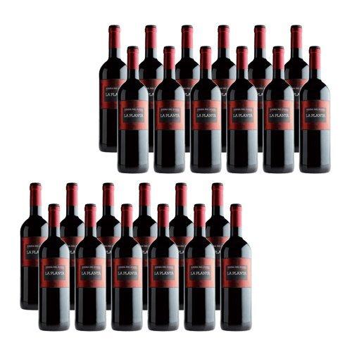 La Planta de Arzuaga Tinta Fina - Vino Rosso - 24 Bottiglie