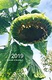 2019 Kalender & Notizbuch: Riesensonnenblume, Terminplaner, DIN A5 quer - 1 Woche & Platz für Notizen auf 2 Seiten