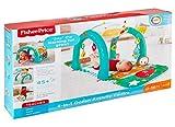 Fisher-Price FNF24 Spielzeug, Mehrfarbig