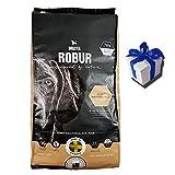 13 kg Bozita Robur Maintenance weizenfreies Hundefutter alle Rassen + Geschenk