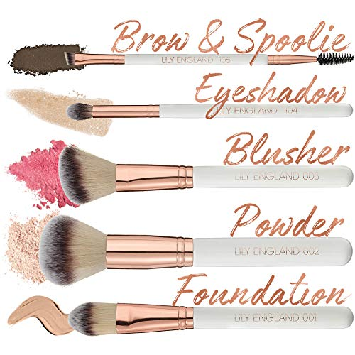 Lily England Rose Gold Makeup Brush Set with Case. 5 Best Make Up Brushes for Face and Eyes