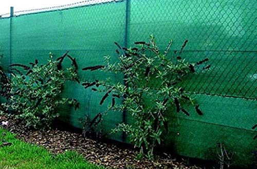 Riegolux 107659 Malla Ocultación, Verde, 2 x 5 m, 70 g/m2