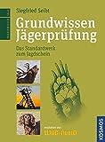 Grundwissen Jägerprüfung: Der Standardweg zum Jagdschein