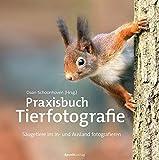 Praxisbuch Tierfotografie: Wildschwein, Eichhörnchen, Robbe & Co. ? Säugetiere an Land und am Wasser fotografieren