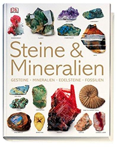 Preisvergleich Produktbild Steine & Mineralien: Gesteine, Mineralien, Edelsteine, Fossilien