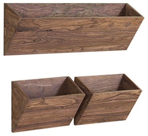 Jangir Solid Wood Book Shelf (Glossy Finish, Brown)