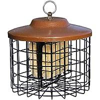 Stokes Select Eichhörnchen Proof Double Suet Futterhaus mit Metall Dach, 25,4cm Durchmesser, 2Talg Kuchen Kapazität