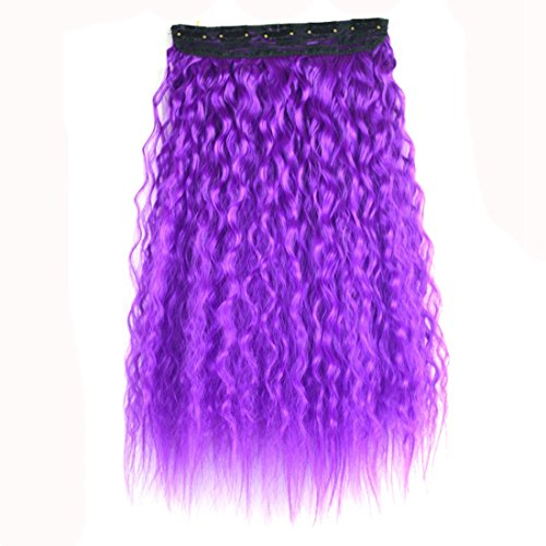 SHIZHESHOP Extension Hot Hot Five Card Wig Piece Naturel réaliste fronceur des Cheveux sans Solution de continuité 60 centimètres Color Gradient Hair Bun Violet