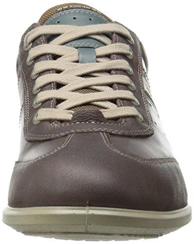Ecco Chander Herren Sneaker Braun (Mocha/Coffee/Green Gables/Gravel)