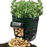 Abdeckplane Tragbare Gartenpflanztasche oder Taschen wachsen, Gemüse anbauen: Kartoffeln, Karotten, Tomaten & Zwiebeln, Dunkelgrün (größe : 34X35cm)